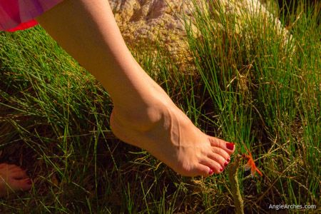 this-dragonfly-loves-my-feet-25